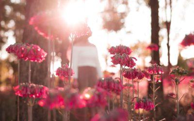 Resolving Grief: Umgang mit Trauer & Verlust